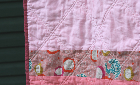 echino-patchwork-back2