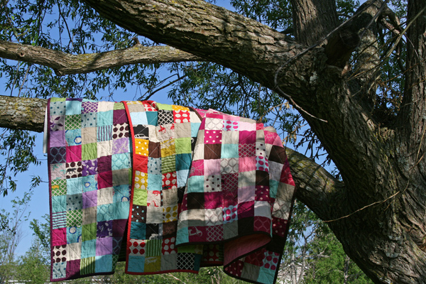 echino-quilts